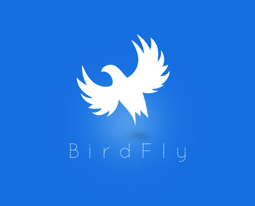 Bird fly Free logo template